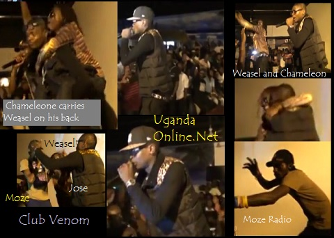 Chameleone, Weasel and Moze Radio performance at Venom