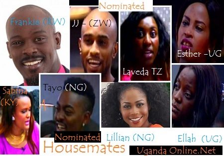 Big Brother Hotshots - Nominated housemates Week 2