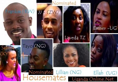 Big Brother Hotshots - Nominated housemates Week 2